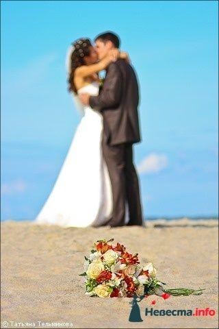 Свадебная фотосъёмка в Калининграде - фото 116976 Фотограф Татьяна Тельминова