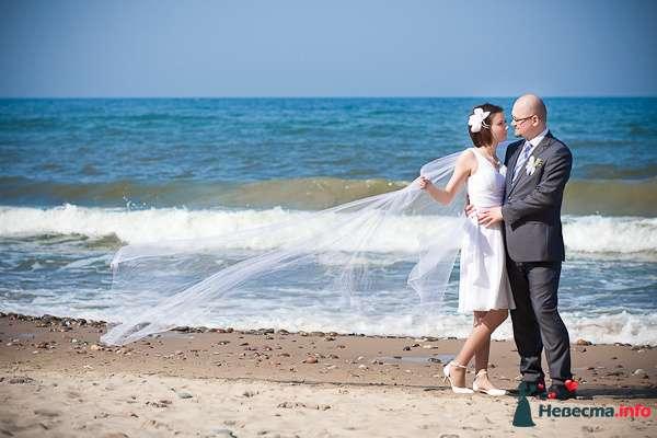 Свадебная фотосъёмка в Калининграде - фото 116981 Фотограф Татьяна Тельминова