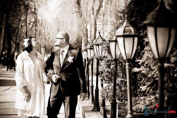 Свадебная фотосъёмка в Калининграде - фото 120387 Фотограф Татьяна Тельминова