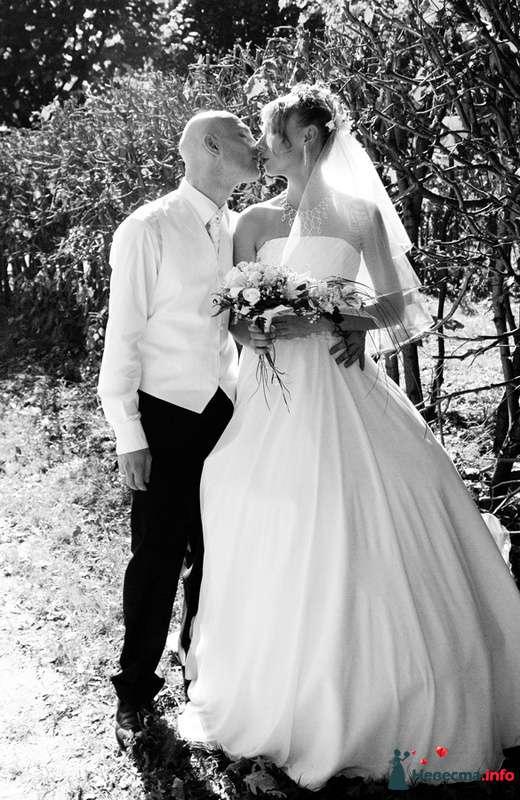 Саша+Оксана - фото 129829 Невеста01