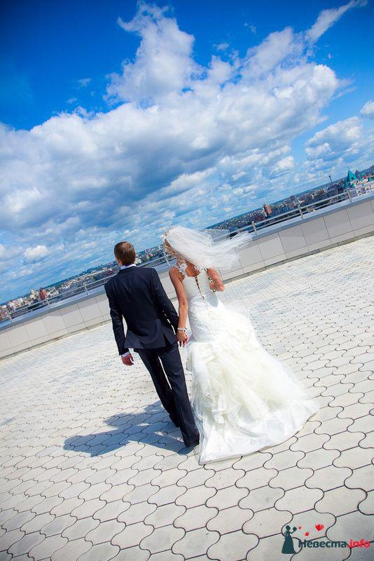 Фото 125816 в коллекции Wedding - Свадебный фотограф Денис Касецкий