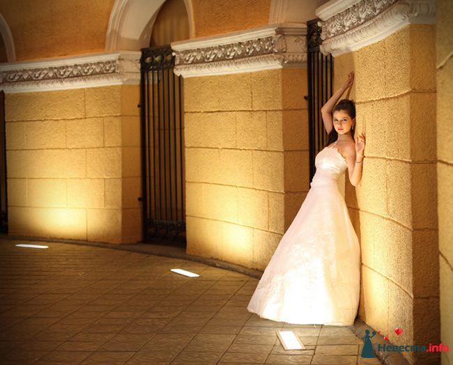 Фото 125823 в коллекции Wedding - Свадебный фотограф Денис Касецкий