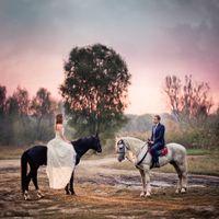 люблю лошадей)))