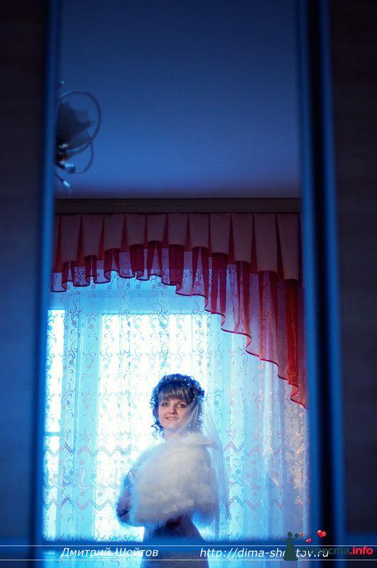 Фото 119695 в коллекции фотограф Дмитрий Шойтов - Дмитрий Шойтов