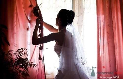 Фото 10115 в коллекции 1 свадьба - Фотограф - Наталья Захарова