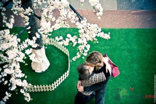 Фото 12112 в коллекции Love-story - Фотограф - Наталья Захарова