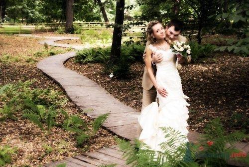 Фото 15356 в коллекции Мои фотографии - Невеста01