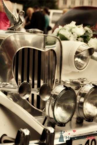 Фото 15357 в коллекции Мои фотографии - Невеста01