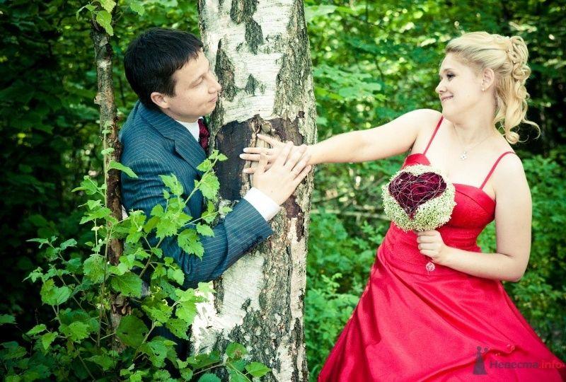 Жених и невеста, взявшись за руки, стоят возле дерева  - фото 47214 Ivetta