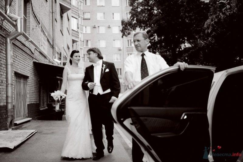 выход жениха и невесты - фото 59432 Мариника