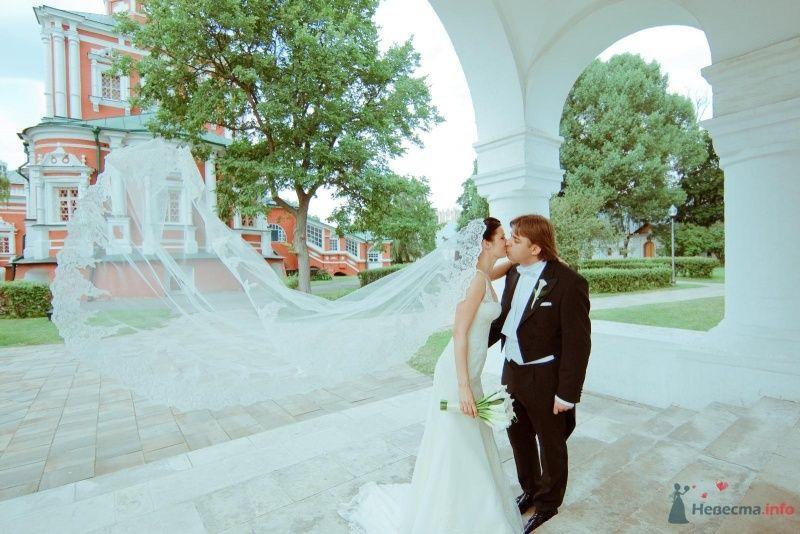 Жених и невеста целуются посреди улицы - фото 59441 Мариника