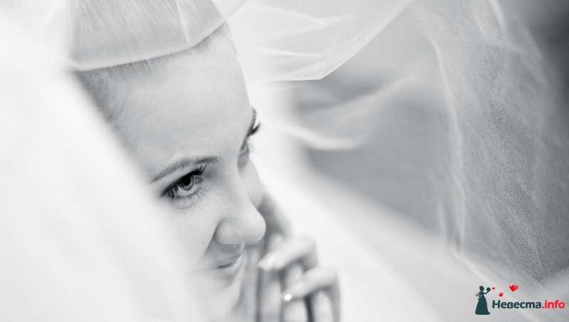 Фото 121074 в коллекции Мои фотографии - Невеста01