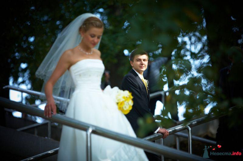 Фото 127812 в коллекции Мои фотографии - Studio-Wedding - фотограф