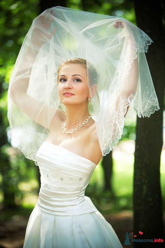 Фото 127813 в коллекции Мои фотографии - Studio-Wedding - фотограф