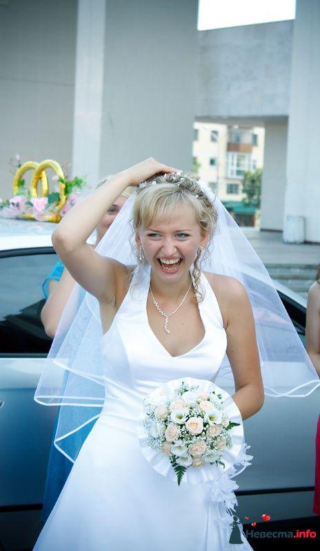 Фото 124062 в коллекции Свадебный альбом - Свадебный фотограф Александр Варков