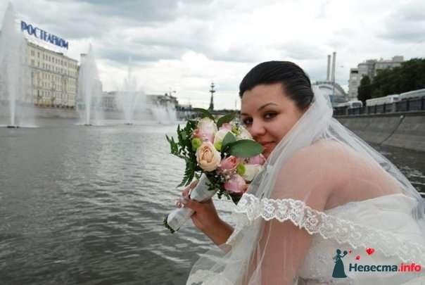 Фото 126113 в коллекции свадьба - Фото, видео услуги