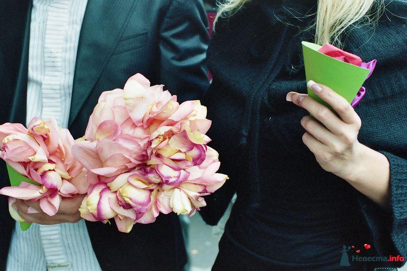 Фото 85105 в коллекции Наша счастливая свадьба - Хлоя