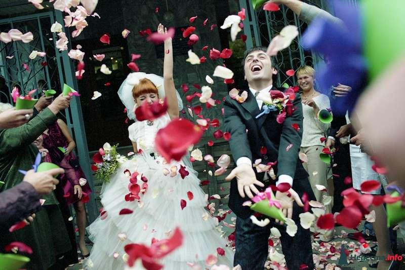 Фото 85111 в коллекции Наша счастливая свадьба - Хлоя