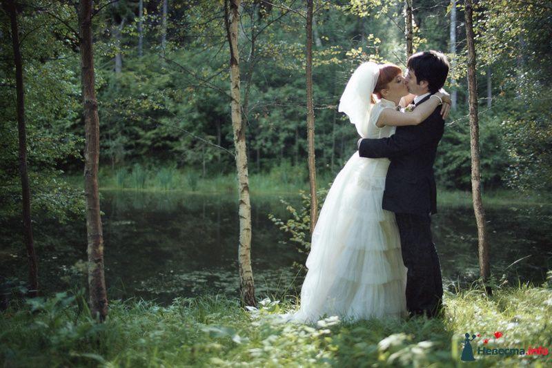Фото 85115 в коллекции Наша счастливая свадьба - Хлоя