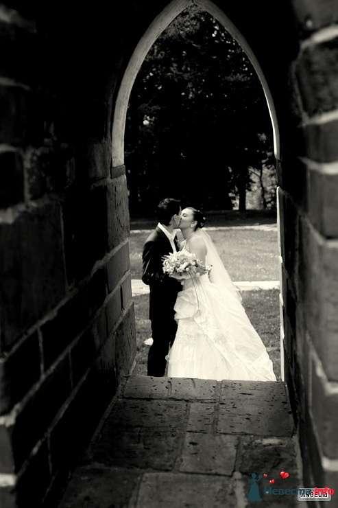 Фото 127016 в коллекции Свадьба - Невеста01