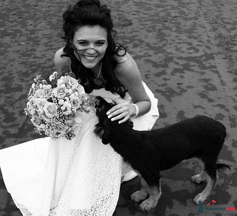Фото 127019 в коллекции Свадьба - Невеста01