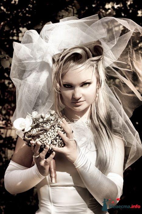 Фото 127222 в коллекции Свадебное портфолио - Анна Калашникова