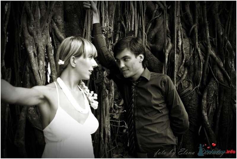 Фото 129306 в коллекции wedding - Раскалей Елена фотограф