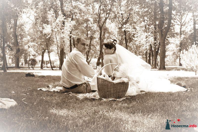 Фото 129510 в коллекции Свадебный