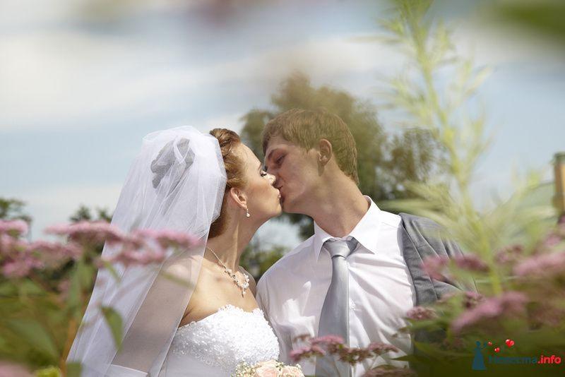 Фото 130273 в коллекции Свадьба