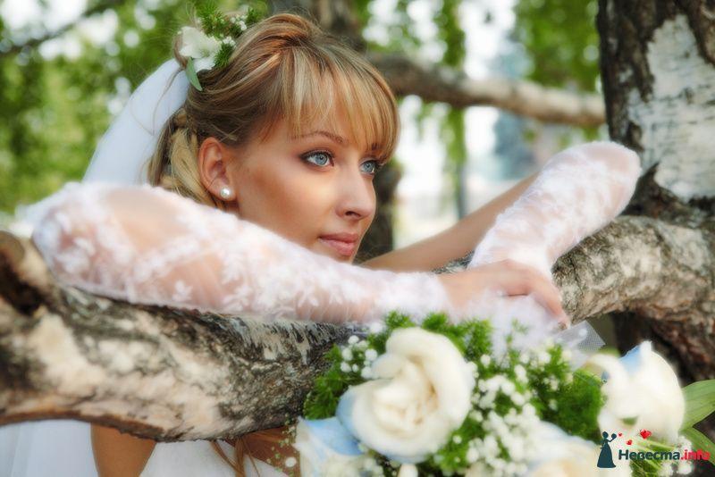 Фото 130276 в коллекции Свадьба