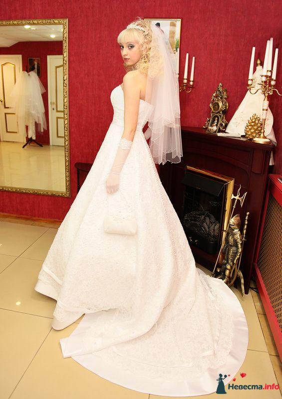 Фото 130319 в коллекции Свадьба - Полевничий Геннадий