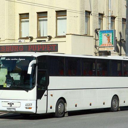 Автобус на 30-49 мест - аренда на 1 час