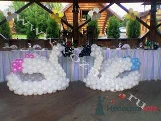 Украшение фигурами из шаров - фото 11314 Воздушный Змей - оформление шарами