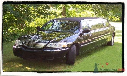 Линкольн Таун Кар черный - фото 12369 Лимузин Престиж - пассажирские перевозки