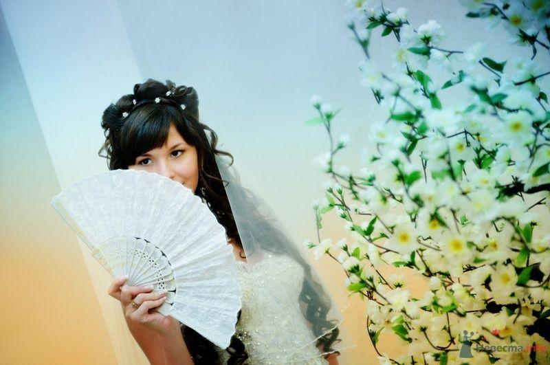 Фото 40081 в коллекции Wedding by Svetlana Alexseeva - Rainbow