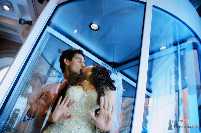 Фото 40096 в коллекции Wedding by Svetlana Alexseeva - Rainbow