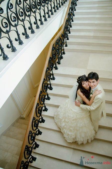 Фото 40098 в коллекции Wedding by Svetlana Alexseeva