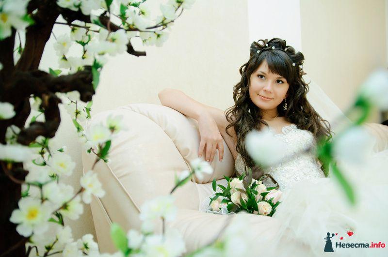 Невеста в белом платье сидит на кожанном диване рядом с цветущим деревом - фото 88661 Rainbow