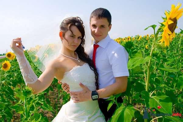 Фото 131027 в коллекции Момент - Свадебный фотограф - Александра-Ал