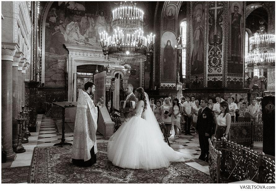 Фото 4850131 в коллекции Портфолио - Фотограф Валерия Васильцова