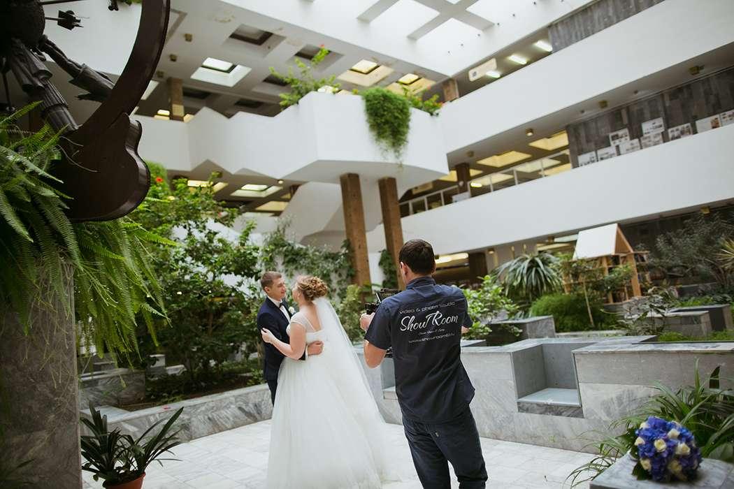 "съёмка свадебной прогулки - фото 8098316 ""ShowRoom"" - свадебная видеография"