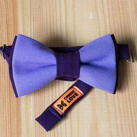 Бабочка фиолетового с сиреневым цвета Стоимость 790р.  Чтобы заказать пишите в л.с.  или по т. +7 950 038 54 26