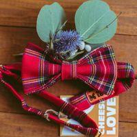 Галстук-бабочка шотландка 790р. Чтобы заказать пишите в л.с.