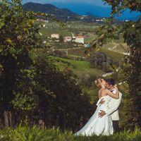 Виноградники Among the Hills в Венето, Тревизо, Италия