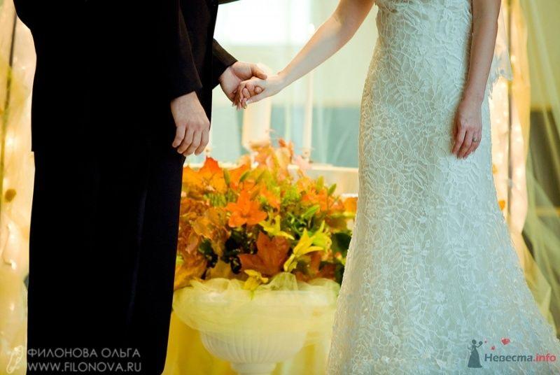 Фото 65549 в коллекции Свадьба Кристофера и Марины - Фотограф Филонова Ольга