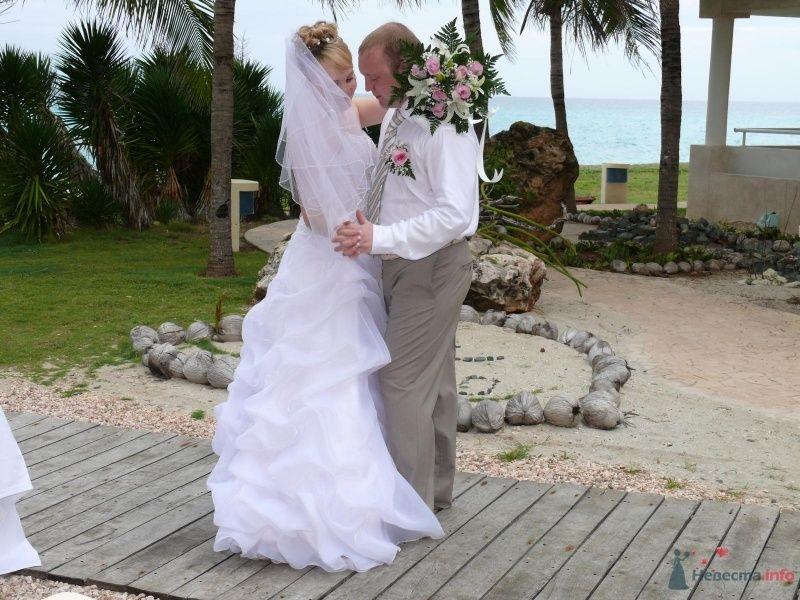 Танец любви! - фото 58293 Sundae