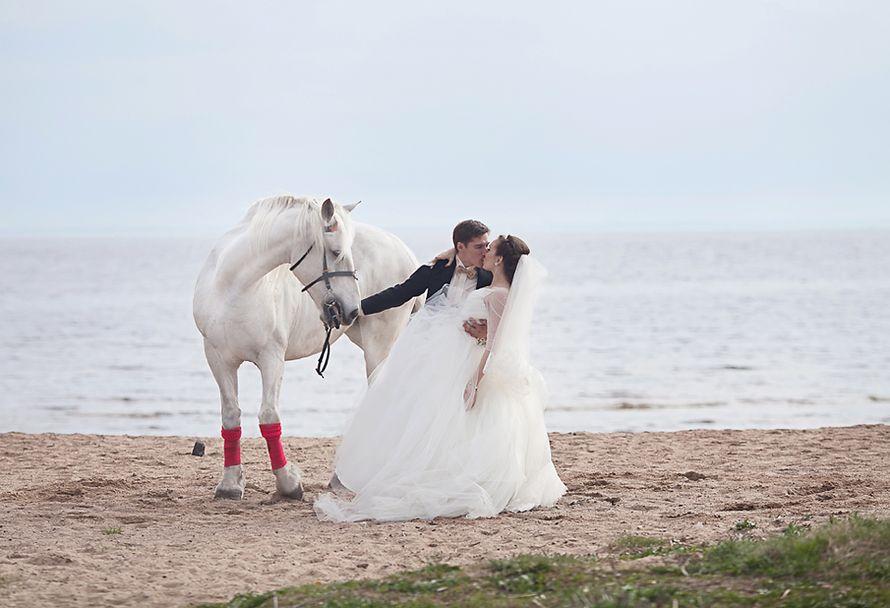 Айна и Андрей. Финский залив СПб. - фото 2375382 Фотограф Анна Лемеш