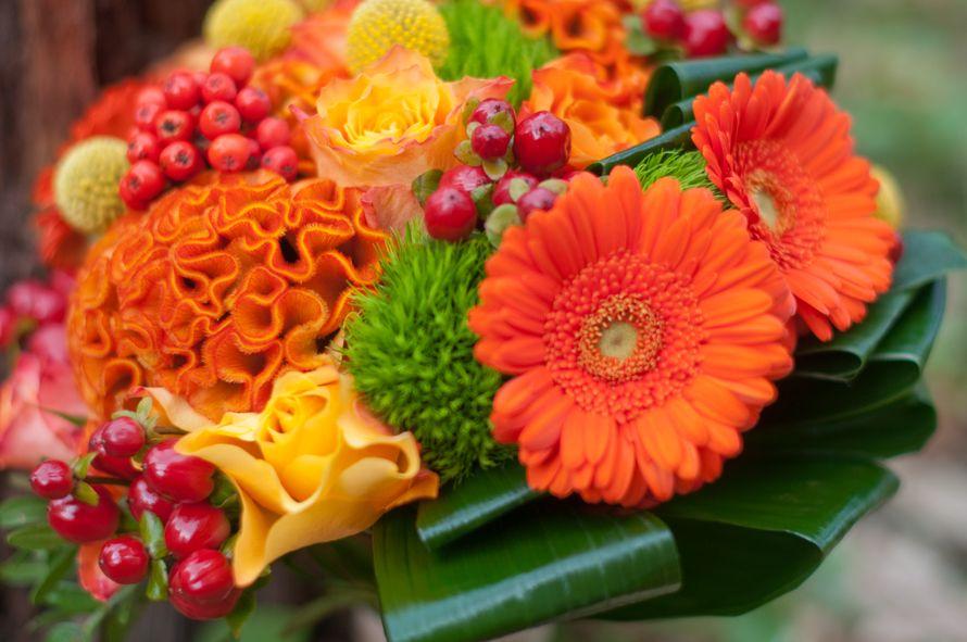 Свадебные букеты из оранжевых герберы, букет гербер москва