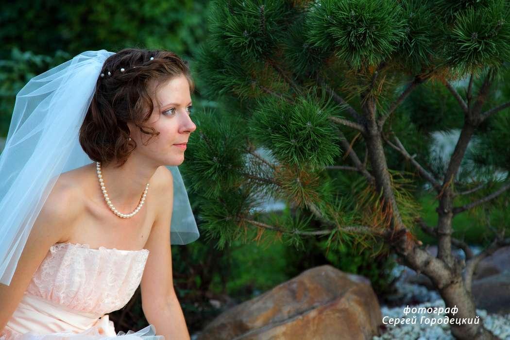 Фото 2810095 в коллекции Мои фотографии - Фотостудия Фотокаприз