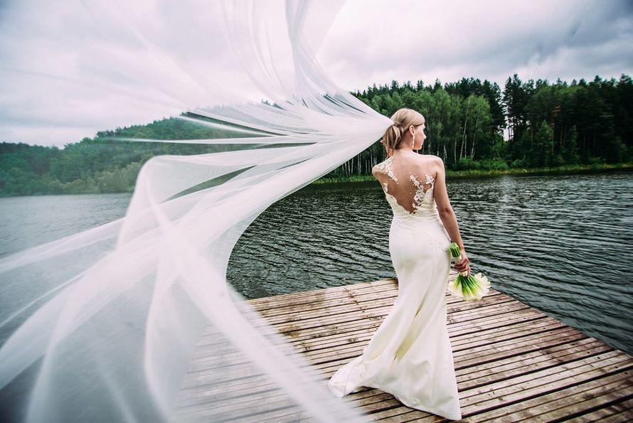 Фото 16701962 в коллекции Портфолио - Фотограф Апальков Вячеслав